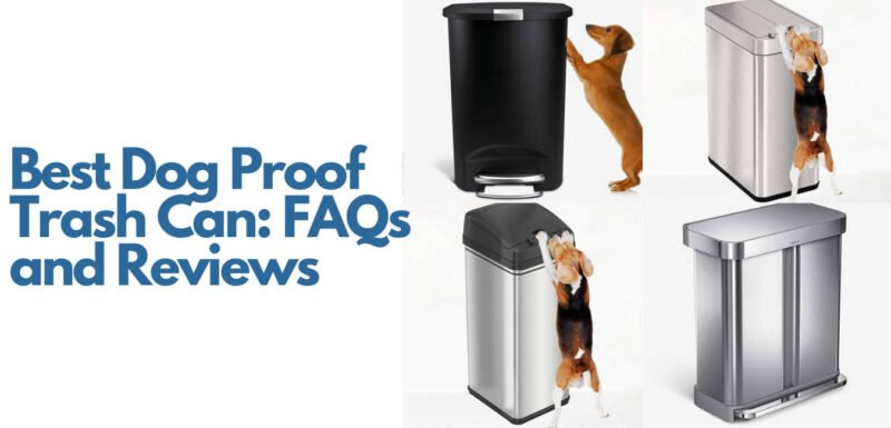 Best Dog Proof Trash Can